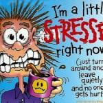 Det startede ikke med et kys, men med stress
