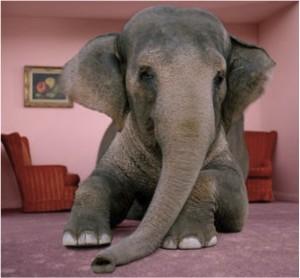 Elefanten i stuen