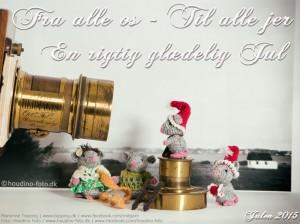 Glædelig jul fra Tulles Dyrereservat